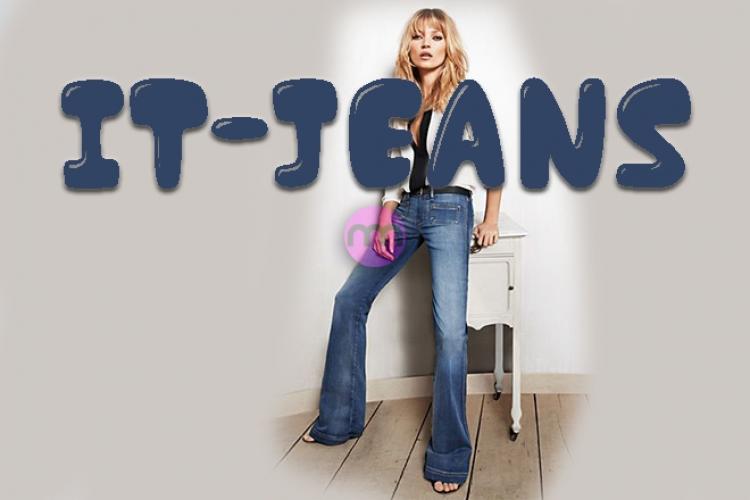 Moda Terimi: