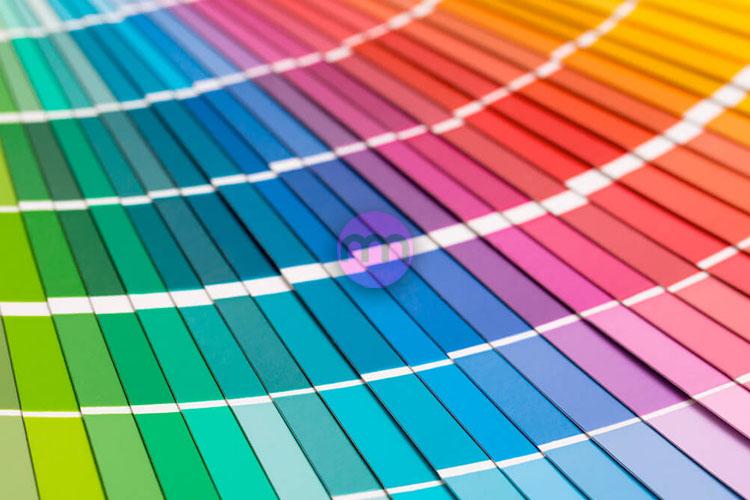 Hangi Renk Size Uygun?