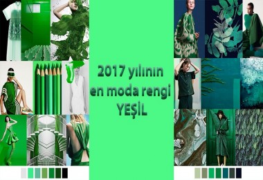 2017 Yılın En Moda Rengi