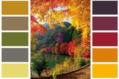 Sonbahar Renkleri Nelerdir?